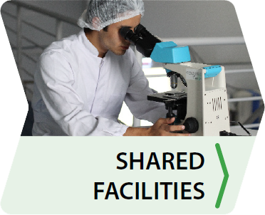 biobased facilities
